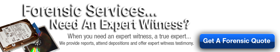 forensic services expert witness